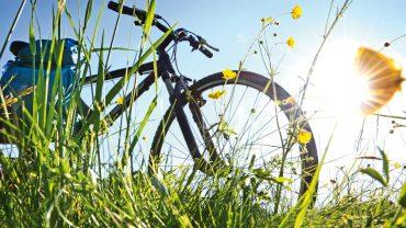 Et si on prenait des vacances à vélo ?