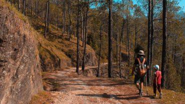 5 conseils pour vos prochaines randonnées en famille