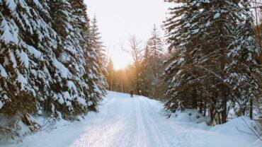 Passion ski de fond et pourquoi vous devriez vous y mettre aussi!